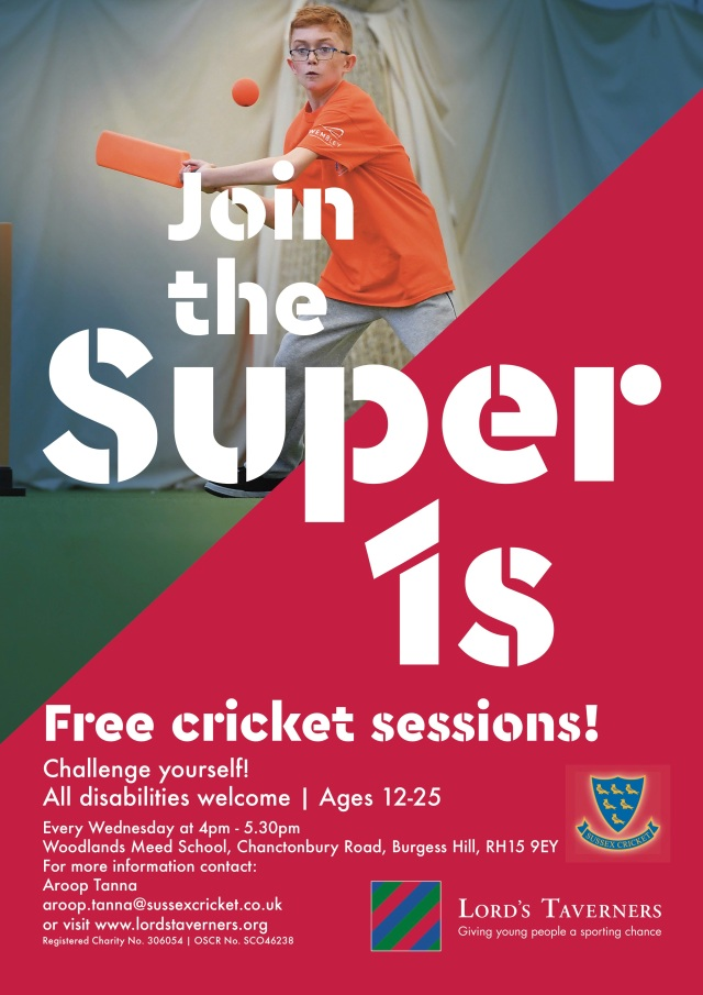 Burgess Hill Disability Cricket Sessions